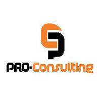Pro Consulting recrute un Consultant