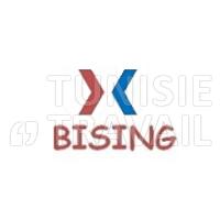 Bising recrute Ingénieur en GC