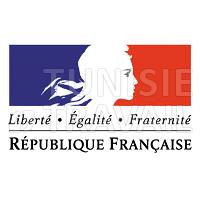 Clôturé : Bourses d'Études de l'Ambassade de France excellence aux doctorants en cotutelle pour finaliser leur projet de recherche doctorale