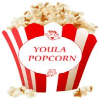 Youla Popcorn recrute Technicien Supérieur en Electronique Industriel