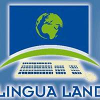 Lingua Land recrute Professeurs