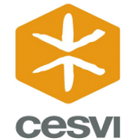 Cesvi is looking for Logistic Officer