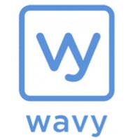 TDLS Wavy recrute Web Designer