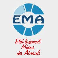 EMA recrute Ingénieur Maintenance Electromécanique
