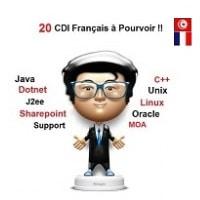 SSII Française Proposent 20 CDI Français