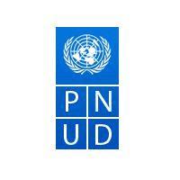 PNUD recrute un Expert National en Reforme Légale